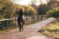 Ilfracombe riding